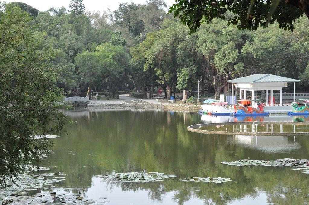 台南公園(舊名中山公園)主照片