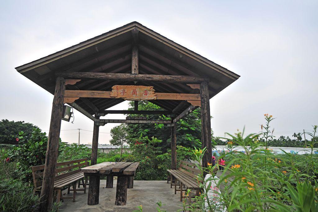 新鐘社區蝴蝶生態河堤公園主照片