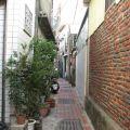 茉莉巷照片