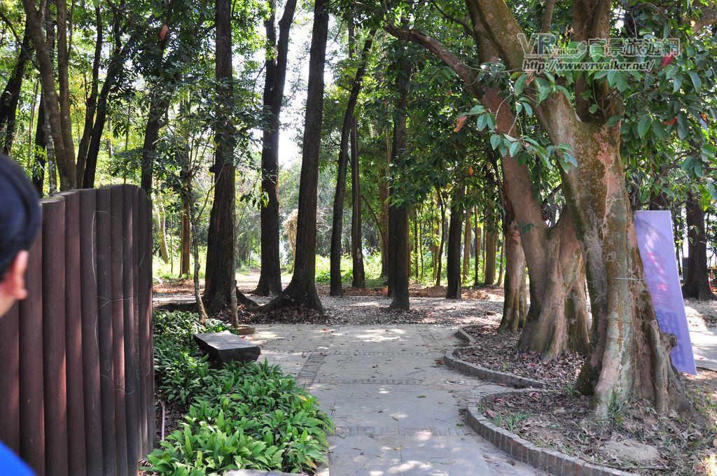 新威苗圃(新威森林公園)主照片