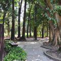 新威苗圃(新威森林公園)