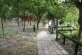 四草大眾廟-廟後步道1照片
