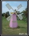 向陽農場-入口處可愛的風車照片