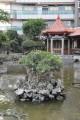 吳園(台南公會堂)-吳園7照片