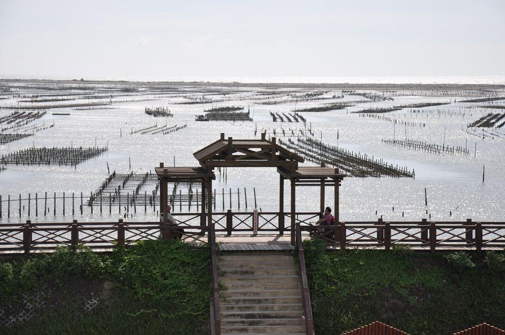 七股潟湖主照片