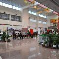 台南機場(台南航空站)-機場大廳3照片