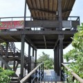 七股紅樹林保護區-觀景台照片