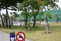 台南市立體育公園-台南市立體育公園13照片