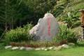 茂林紫蝶幽谷(賞蝶步道, 茂林國家風景區)-身穿花花衣照片