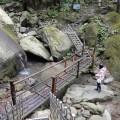 馬武督探索森林-舞楓池照片