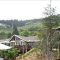 山上人家森林農場-農場風景照照片