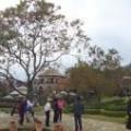新社古堡莊園好美麗-莊園環景照片