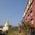 噶瑪噶居寺-噶瑪噶居寺照片