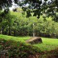 關子嶺嶺頂公園(關仔嶺嶺頂公園)-關子嶺嶺頂公園(關仔嶺嶺頂公園)照片