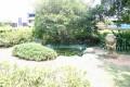 台灣藝術博物館-池塘照片