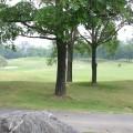嘉南高爾夫球場(嘉南球場)-嘉南高爾夫球場(嘉南球場)照片