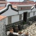 二崁古厝聚落(二崁傳統聚落)-二崁傳統博物館照片