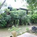 五號樹屋(5號樹屋)