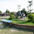八翁酪農專業區