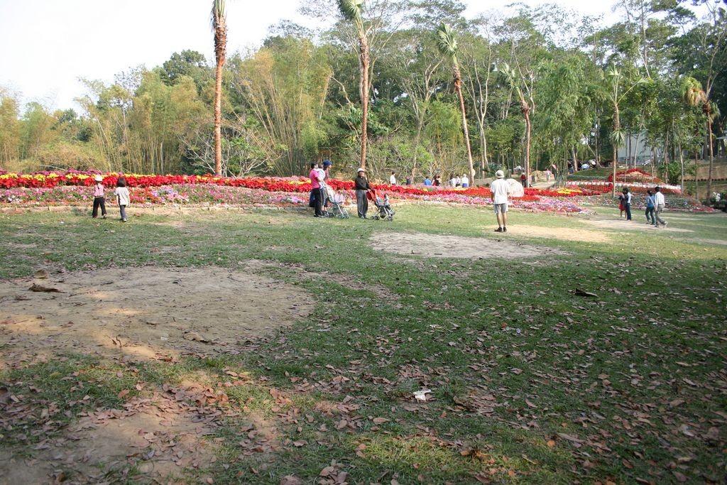 新化國家植物園(中興林場)主照片