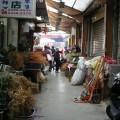 青草巷-青草巷照片