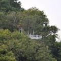 超峰寺旁的觀景點