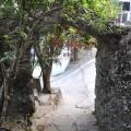 大崗山風景區-超峰寺旁的小徑3照片