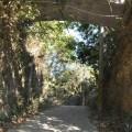 大崗山風景區-超峰寺往雷達站的山路照片