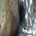 社頂自然公園 (社頂高位珊瑚礁生態保護區)-社頂自然公園 (社頂高位珊瑚礁生態保護區)照片