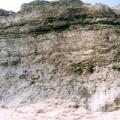 風吹沙(風吹砂)-風吹砂照片