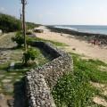 砂島(砂島生態保護區,貝殼砂展示館)-砂島(砂島生態保護區,貝殼砂展示館)照片