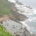 八斗子漁港照片