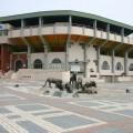 嘉義市立棒球場-嘉義棒球場照片