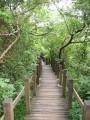 半屏山自然公園-半屏山自然公園照片