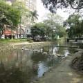 新竹護城河親水公園照片