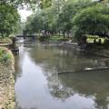 新竹護城河親水公園-新竹護城河親水公園照片