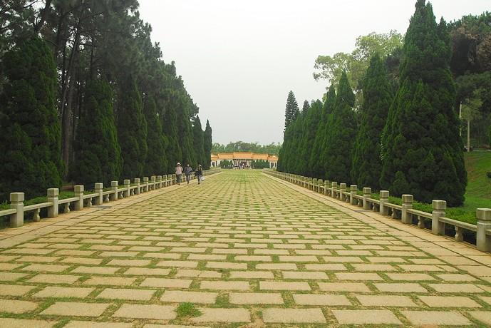 中山紀念林主照片