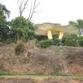 中寮山-山頂上草菇造型的涼亭照片