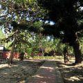 吳鳳廟 與 吳鳳成仁地-園區一景照片