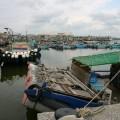 東石漁人碼頭-碼頭區域1照片
