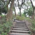 林內公園-林內公園照片