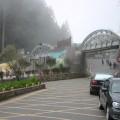 阿里山國家森林遊樂區-阿里山森林遊樂區照片