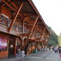 阿里山國家森林遊樂區-整棟皆以原木建造的新阿里山車站照片
