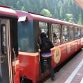 阿里山國家森林遊樂區-阿里山森林小火車照片
