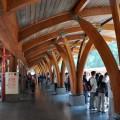 阿里山國家森林遊樂區-新阿里山車站2樓候車月台照片