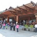 阿里山國家森林遊樂區-新阿里山車站照片