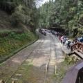 阿里山國家森林遊樂區-神木站2照片