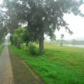 西湖-西湖照片