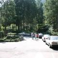 溪頭森林遊樂區(溪頭自然教育園區)-溪頭自然教育園區照片