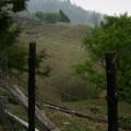 清境農場-清境農場照片